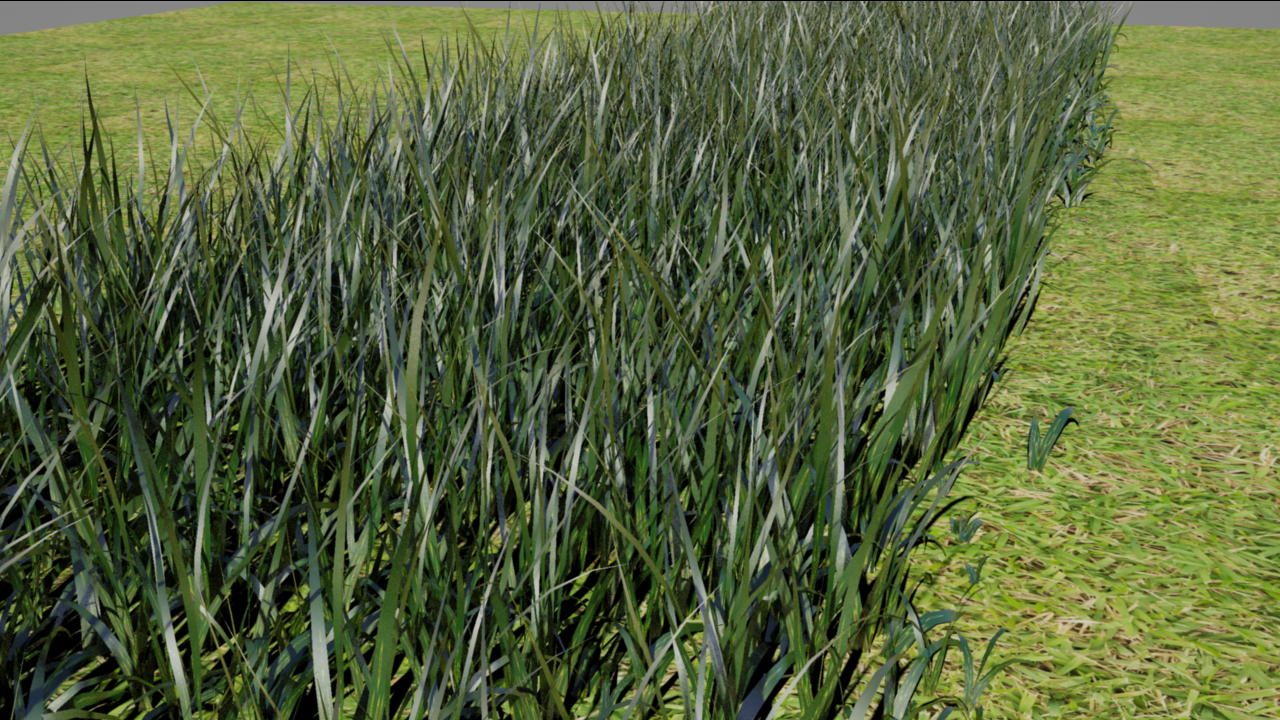 Grass created using PaintFX. Rendered in Mental Ray